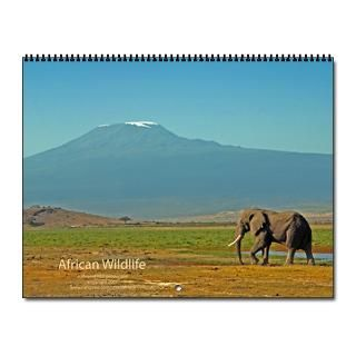 2013 African Animals Calendar  Buy 2013 African Animals Calendars